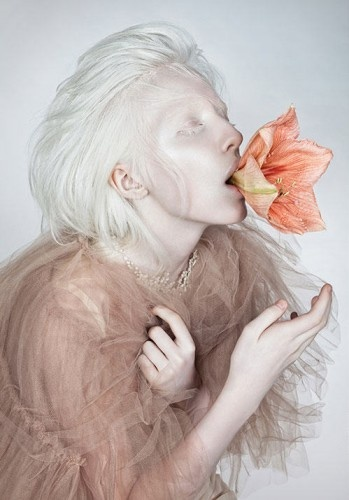 Wild Flower is a contrasting editorial that revolves around the albino beauty Nastya Zhidkova.