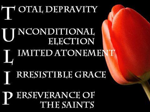 How do we explain predestination? (Photo Credit: Reformation Church, a Non-Denominational Reformed Congrega...