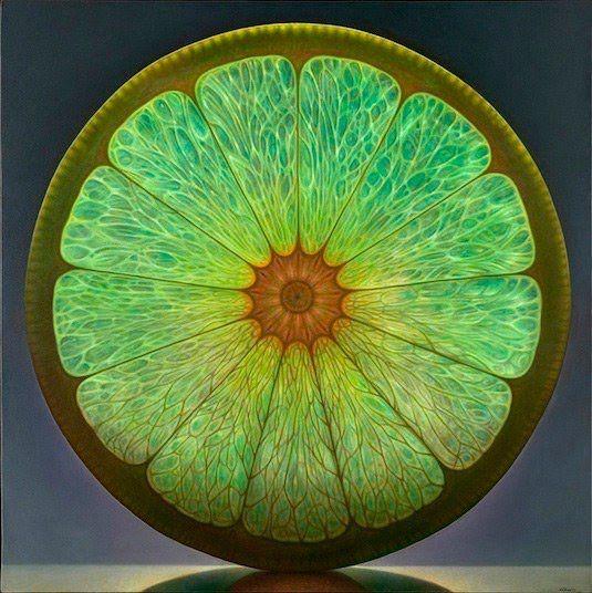 Dennis Wojtkiewicz pasó sus bodegones a otro nivel cuando decidió trabajar con la fruta. Atraído por el interior de las piezas comunes de fruta (sus semillas, sus venas, su carne translúcida y los ...