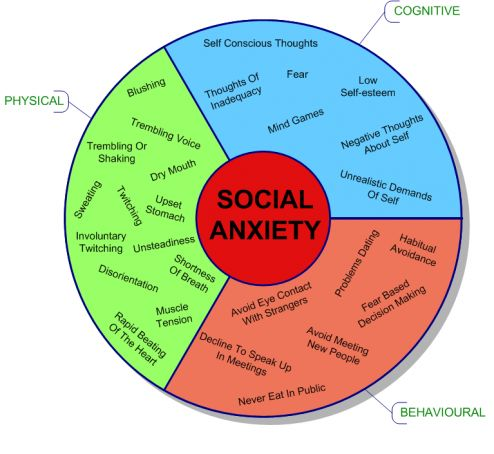A fundamental part of the problem of socially anxious people comes from being stuck in the teenage developmental error of assuming and believing that while everyone else is worth knowing they are not. Reality is that what makes you worth knowing is not how much money you got or how thin you are (among other common concerns) but the unique flavor of the way you experience the world