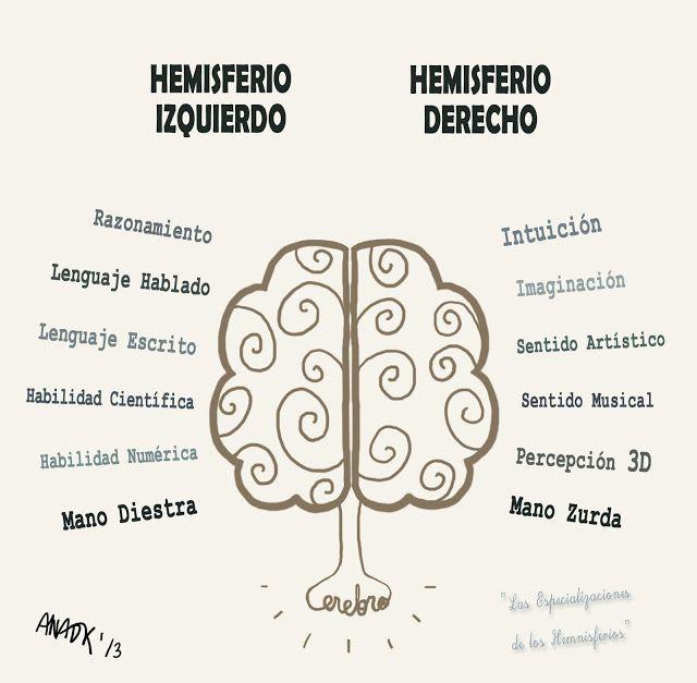 """Arte, Diseño y Productos: Mapas Mentales """"Ergonomía para el pensamiento"""" #hemisferios #salud #cerebro"""