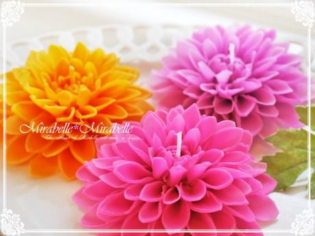ダリアのキャンドル! :キャンドル教室 ミラベル*ミラベル(東京 台東区) #dahlia、#candle,#flower,#pink