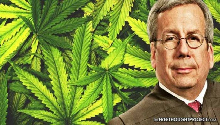 State Supreme Court Justice Just Called for the Release of All Those in Prison for Cannabis