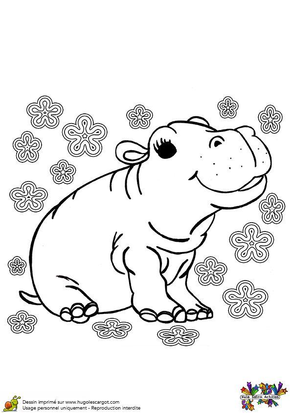 La b b hippopotame est tout joyeux ce dessin est - Animal a colorier ...