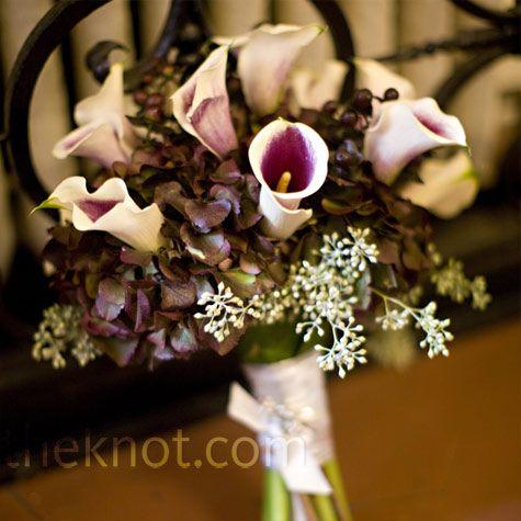Eggplant color hydrangeas with Picasso calla lilies