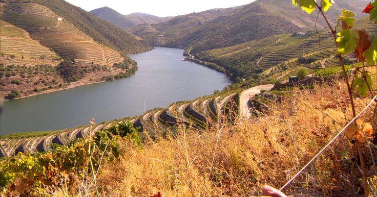 Vale do Douro emoldura uma das regiões mais bonitas do mundo | Via Globo Reporter | 18/12/2015 Cartão postal de Portugal é considerado patrimônio cultural da humanidade. Região vive em torno das uvas e produz um dos melhores vinhos. #Portugal