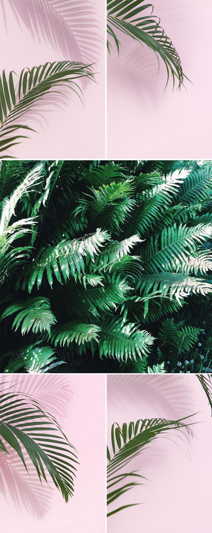 My_little_fabric_Pastel_Botanique2