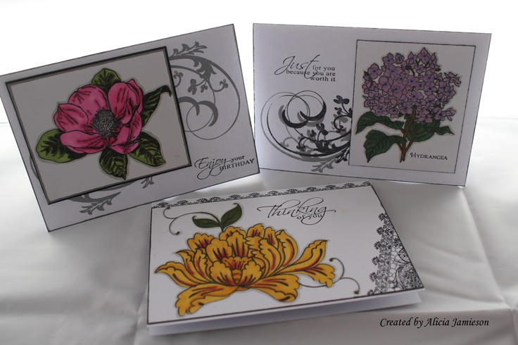 more colouring with Kaszazz Alcohol Art Markers and Kaszazz stamps