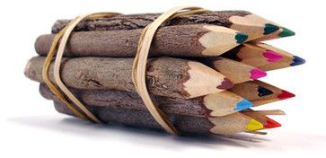 Colored Twig Pencils eclectic kids toys