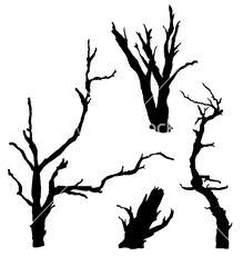 vector dead tree - Google-søk