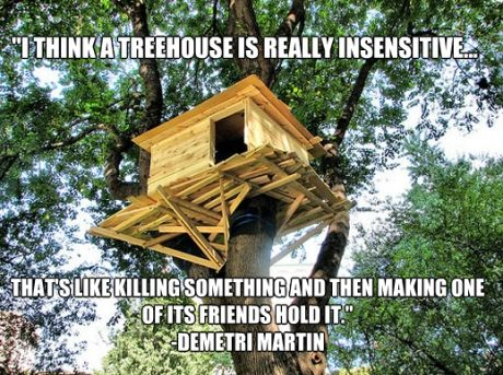 The truth about tree houses…