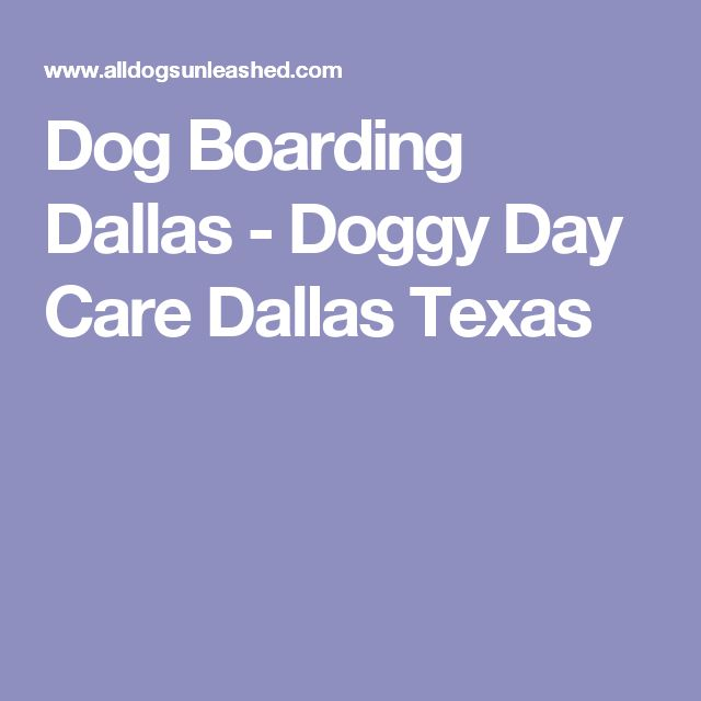Best 25 doggy day care ideas on pinterest puppy facts for Best doggy day care