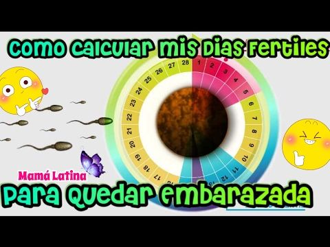 CUALES SON LOS DIAS FERTILES PARA QUEDAR EMBARAZADA | COMO CALCULAR MIS DIAS FERTILES ? - YouTube