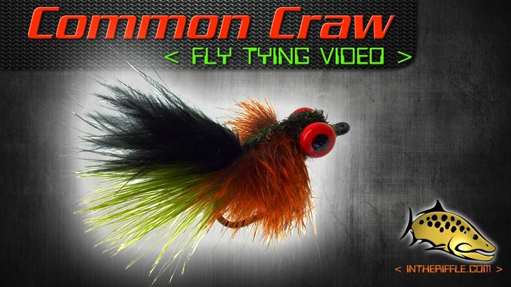 Common Craw Fly Tying Video Instructions (Carp Fly) - James Spicer Fly P...