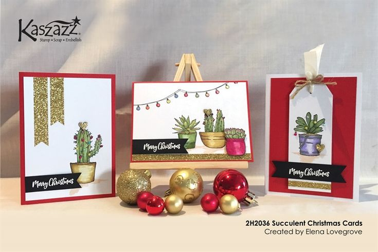 2H2036 Succulent Christmas Cards