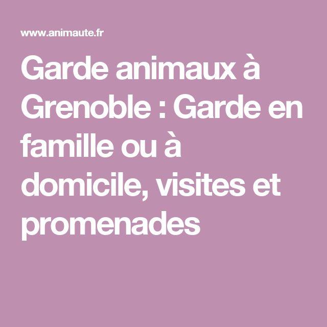 Garde animaux à Grenoble : Garde en famille ou à domicile, visites et promenades