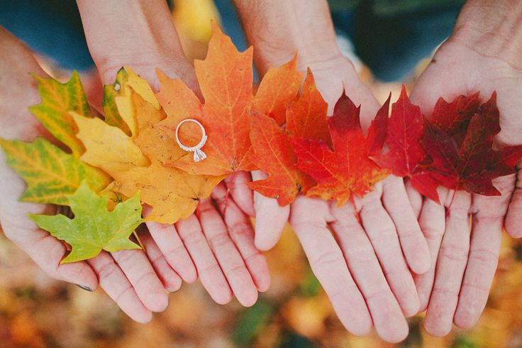 Wedding Ring Photo Idea with Fall Leaves #wedding #photography