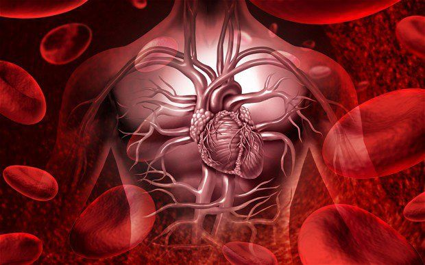 12 possible Heart Symptoms You Should Know | Health Digezt