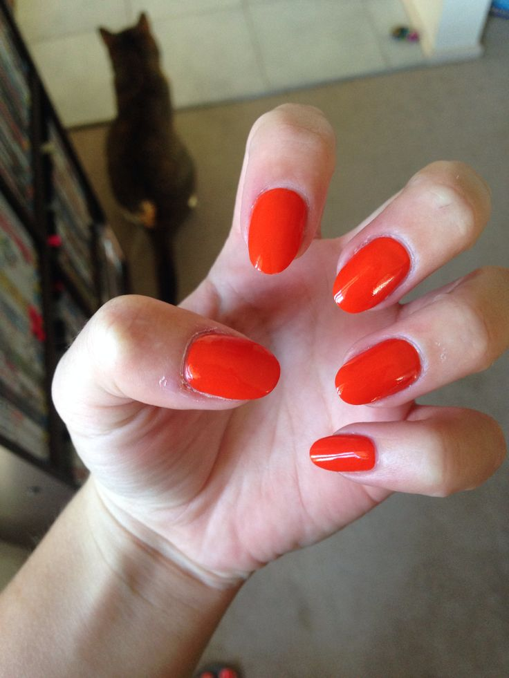 Bright orange. Almond/Round shape. 210914