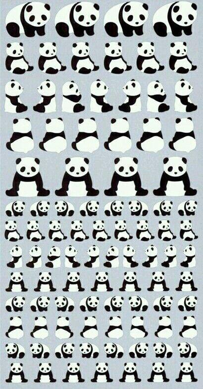 Panda - Fondo pantalla