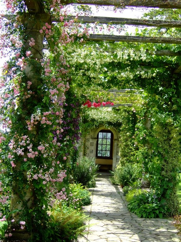 West Dean Gardens - I just love pink climbing roses! https://www.westdean.org.uk/gardens