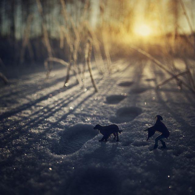 finland | Flickr: Intercambio de fotos