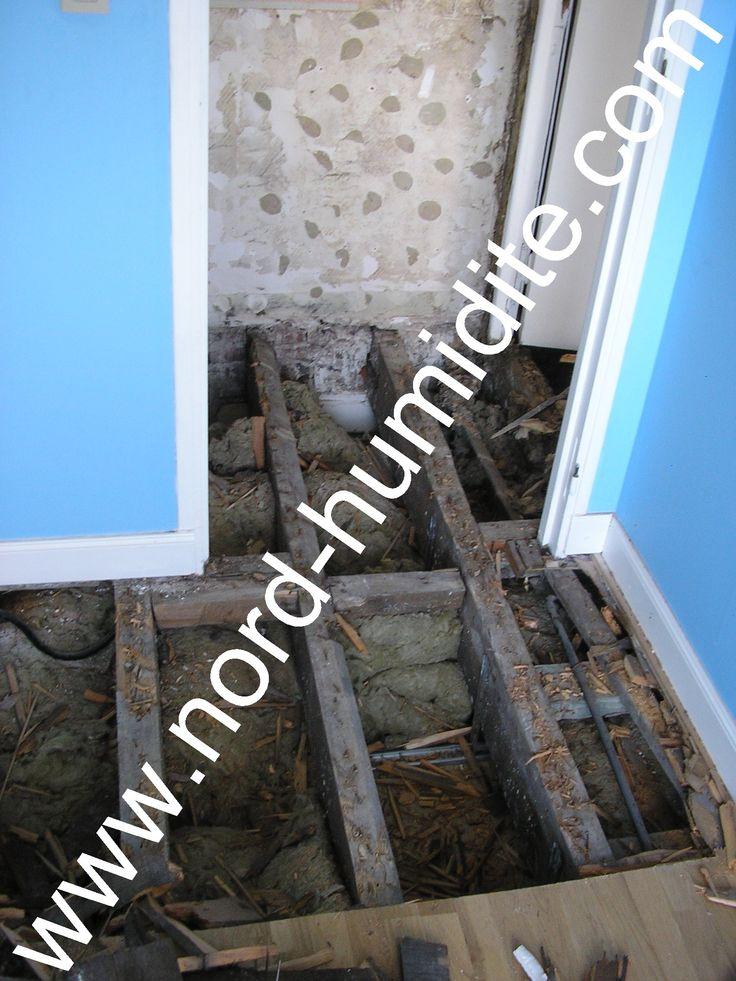 merule sur un mur humide a ne pas confondre avec les sels mineraux - hygrometrie dans une maison