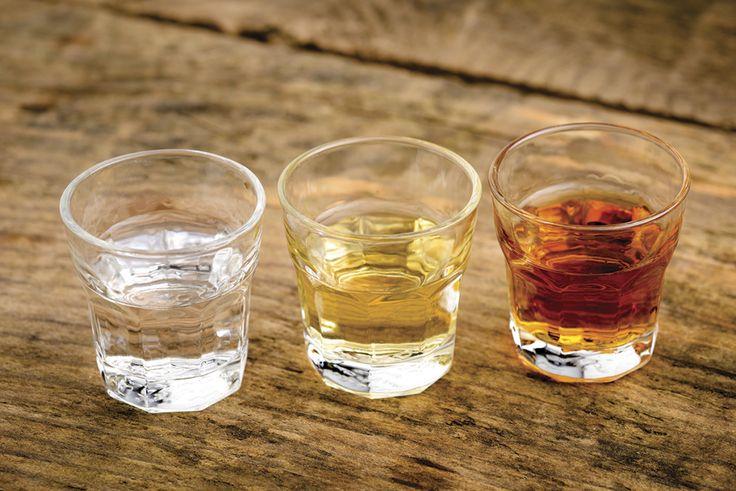 ¿Existen diferentes tipos de tequila?