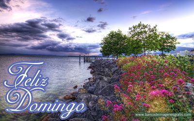 BANCO DE IMÁGENES: Feliz Domingo - Imágenes con Mensajes - Flores y Paisajes