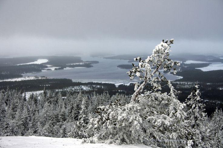 The first snow day in Iivaara Kuusamo Finland by Aili Alaiso