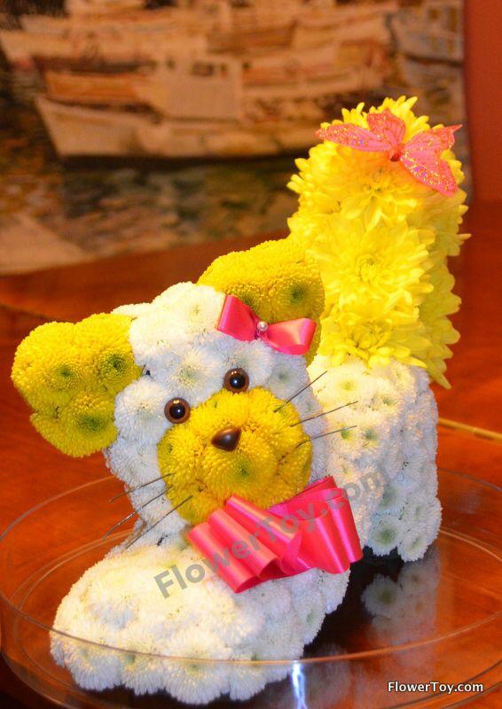 FlowerToy Kitty. Cat made from fresh flowers.