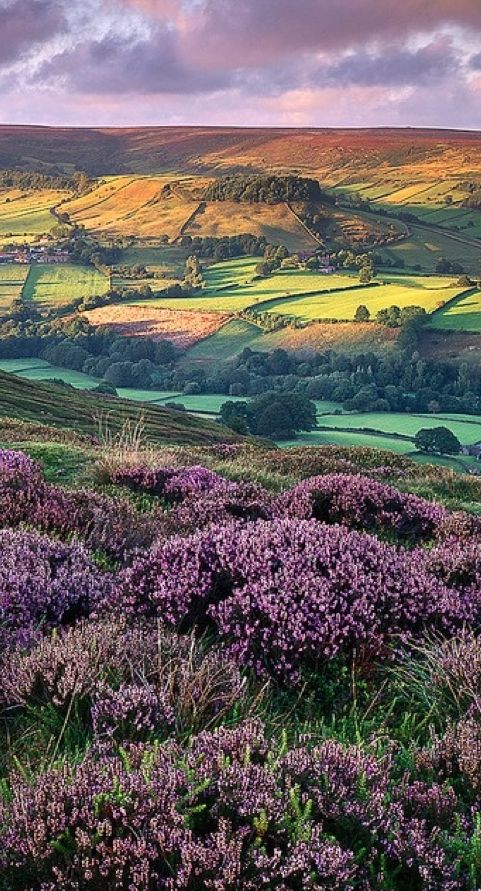Scenic vista in Rosedale, North Yorkshire, England.  Photo: Katty Paris on Flickr