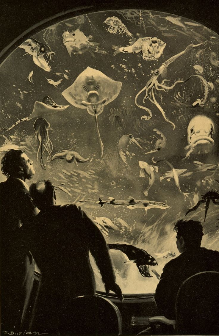 20,000 Leagues Under the Sea illustration by Zdenek Burian.  Professor Aronnax and Conseil spend a lot of the time watching out the window at the sea wonders they pass. The professor notes the species he sees and records them in his studies of the deep sea.