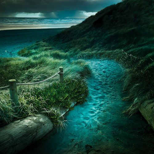 NZ beach path