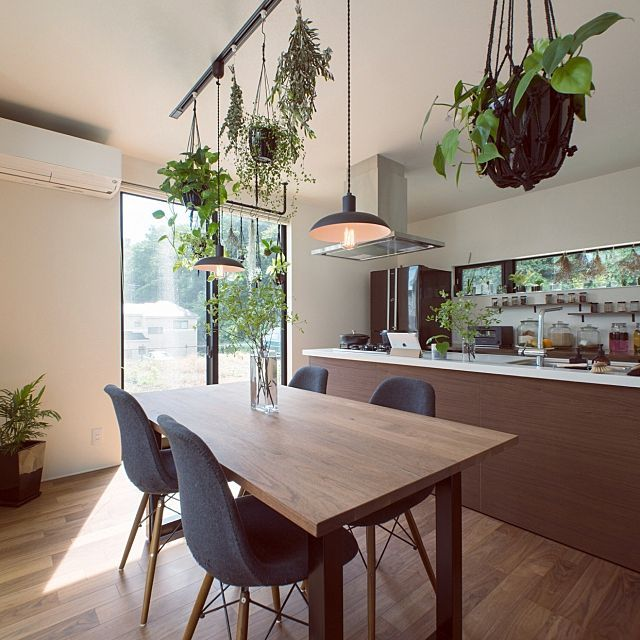 tongariさんの、Kitchen,観葉植物,グリーン,モノトーン,アイランドキッチン,マットブラック,NO GREEN NO LIFE,LIXIL,グリーンのある暮らしについての部屋写真
