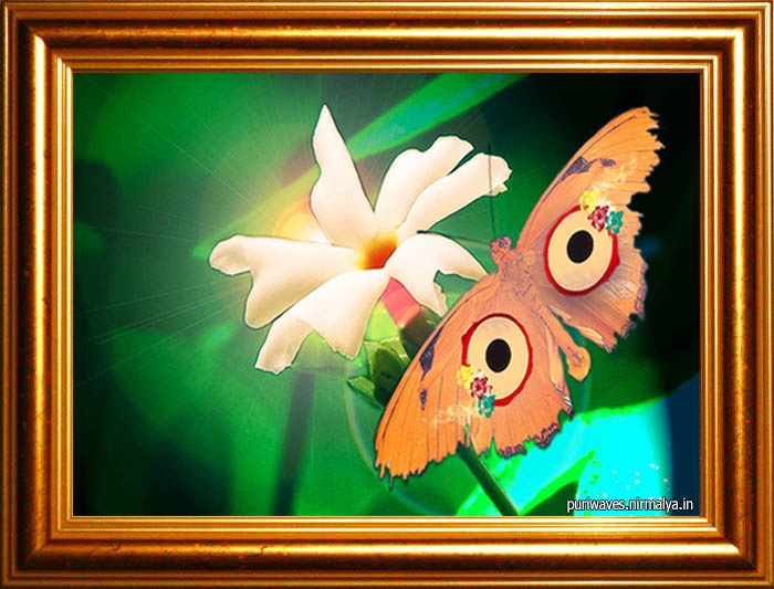 Wall Hangings – Lord Jagannath Butterfly PURIWAVES