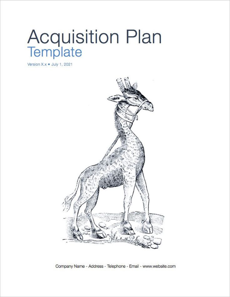How to Write a Business Plan for an Acquisition