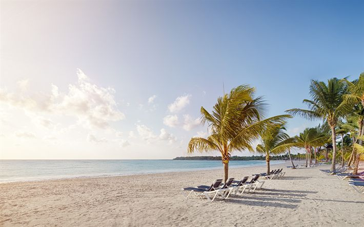 Download wallpapers Cancun, beach, ocean, palm trees, chaise lounges, Riviera, Mexico