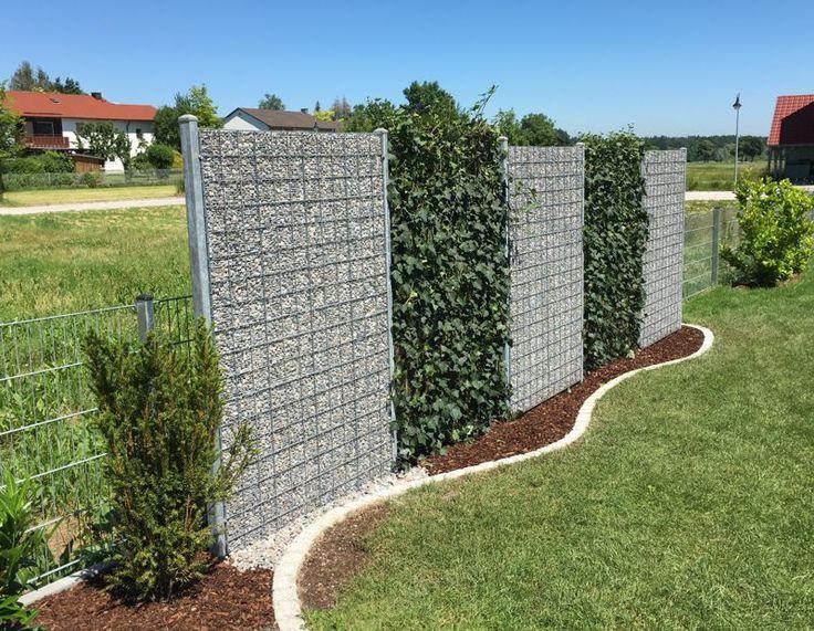 EfeuElement 220 x 120 cm in 2020 Bepflanzung, Garten