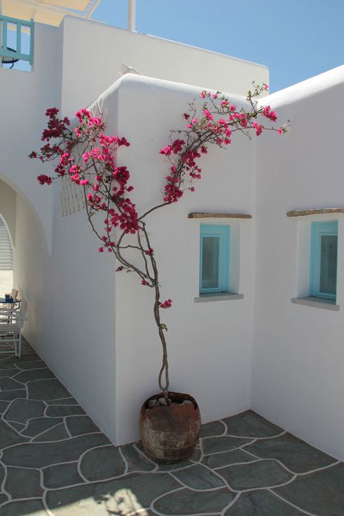 House in Folegandros