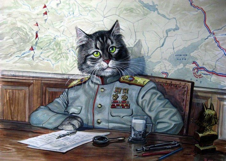 Картинки боевых кошек