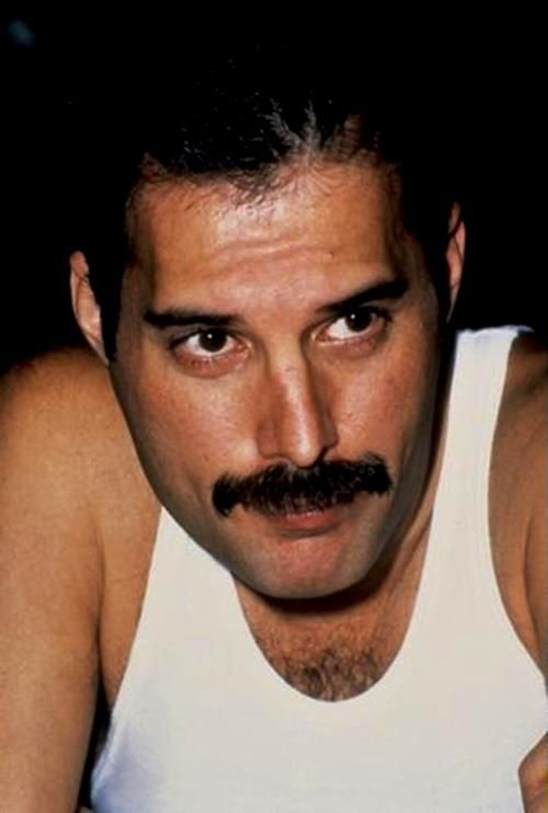 Freddie Mercury---Legendary front man/composer (Bohemian Rhapsody, We Are the Champions,many more)  of Queen