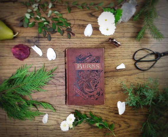 Beautiful Vintage Poetry Book, Robert Burns; Embossed Graphics Pegasus Mystical Fantasy Steampunk Decor