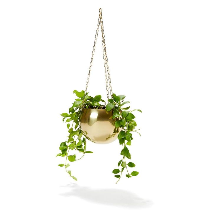 brass Hanging Planter home & Co