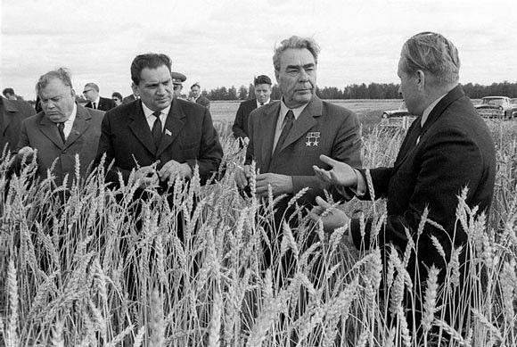 Родина СССР — Сельское хозяйство | OK.RU