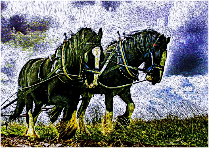 Horses of the Shire ~ Max Streeter, Digital Illustration