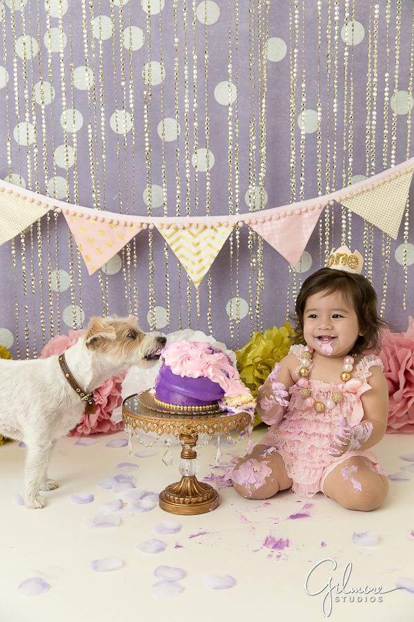 158 Best Images About Cake Smash Sessions By Gilmore