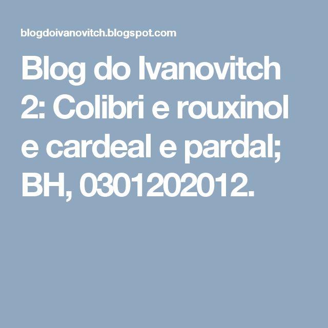 Blog do Ivanovitch 2: Colibri e rouxinol e cardeal e pardal; BH, 0301202012.