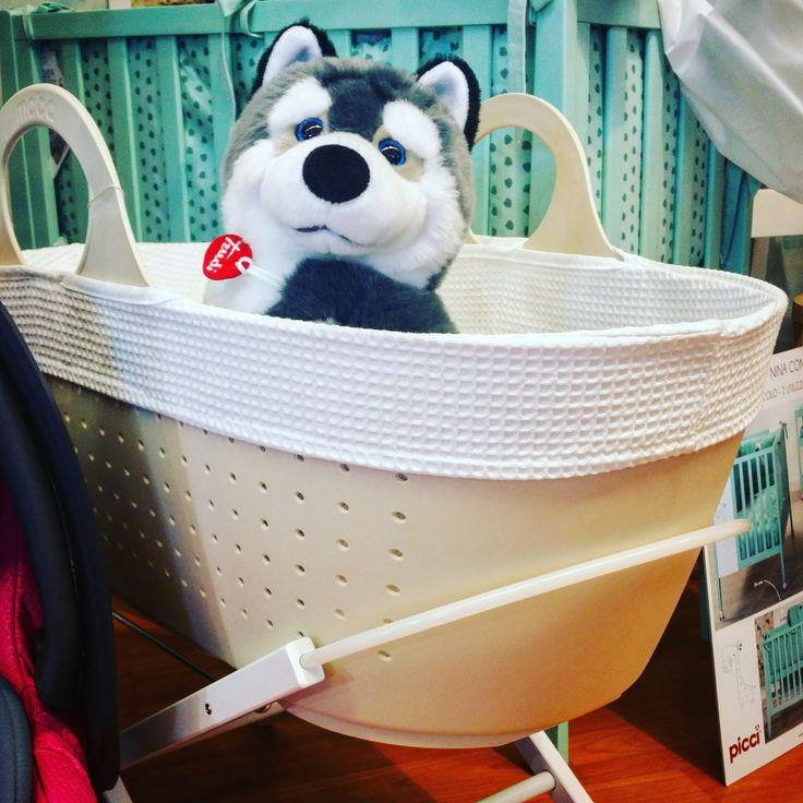 Buon lunedì dal nostro amico cagnolino husky Trudi! Morbido e simpaticissimo aspetta solo di essere adottato da un bimbo amorevole. E nel frattempo? Si rilassa nella bellissima cesta per neonati Moba.  Trovate tutti i prodotti Trudi e Moba sul nostro store online