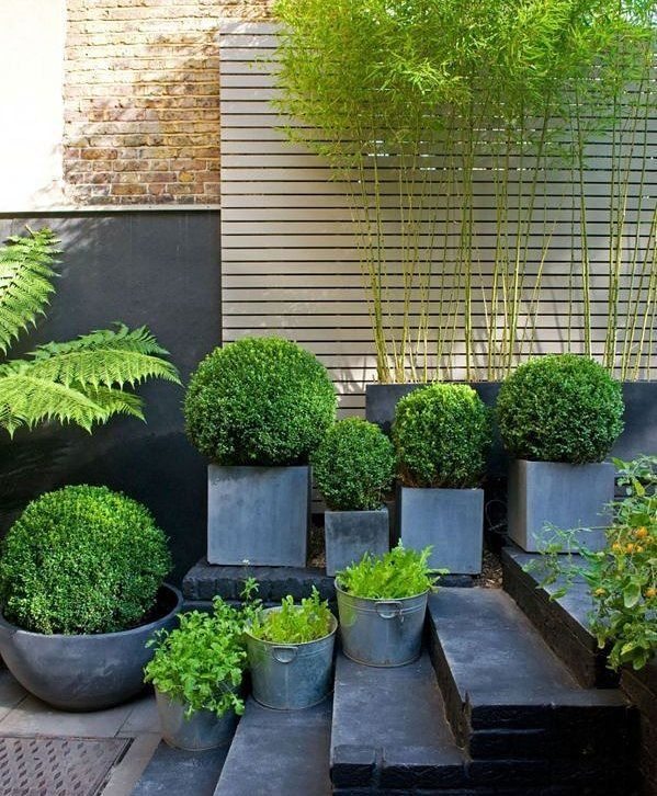 Charcoal and green, what a combo! Dosent take much to make an impact just plan what you are doing before you start. ⚘ From Pinterest  #potplants #gardens #colour #pots #backyard #decks #smallspace